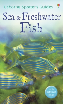Sea and Freshwater Fish, Paperback / softback Book