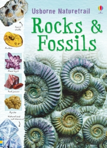 Naturetrail : Rocks and Fossils, Paperback Book