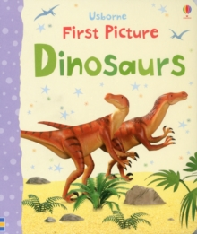 First Picture Dinosaurs, Board book Book