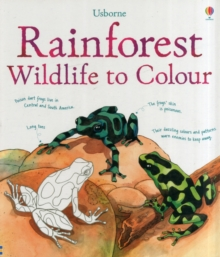 Rainforest to Colour, Paperback Book