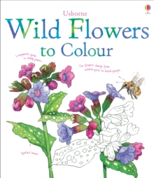 Wild Flowers to Colour, Paperback Book