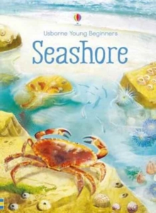 Young Beginners Seashore, Hardback Book