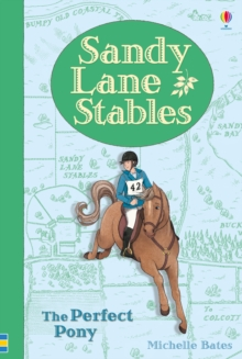 Sandy Lane Stables the Perfect Pony, Hardback Book