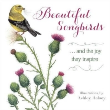 Beautiful Songbirds : ...and the joy they inspire, Hardback Book