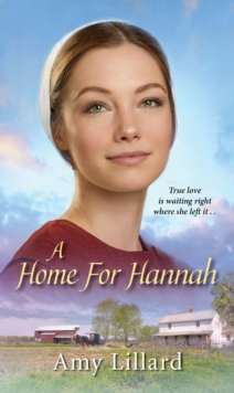 Home for Hannah, Paperback Book