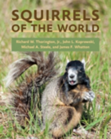 Squirrels of the World, Hardback Book