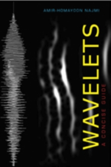 Wavelets : A Concise Guide, Paperback Book