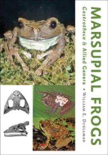 Marsupial Frogs : <I>Gastrotheca </I>and Allied Genera, Hardback Book