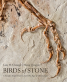 Birds of Stone : Chinese Avian Fossils from the Age of Dinosaurs, Hardback Book