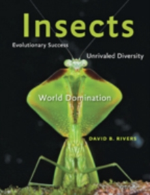 Insects : Evolutionary Success, Unrivaled Diversity, and World Domination, Hardback Book