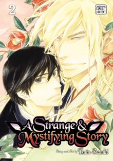 A Strange and Mystifying Story, Vol. 2, Paperback / softback Book