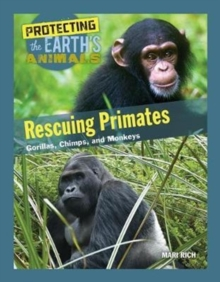 Rescuing Primates : Gorillas, Chimps, and Monkeys, Hardback Book