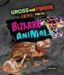 Bizarre Animals, Hardback Book