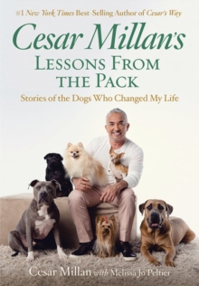 Cesar Millan's Lessons From the Pack, Paperback / softback Book