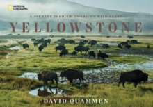 Yellowstone : A Journey Through America's Park, Hardback Book