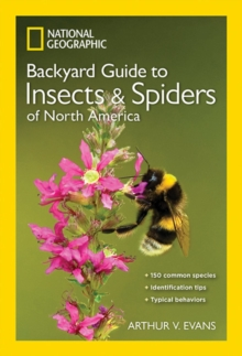 NG Guide to the Insects and Spiders of North America, Paperback Book