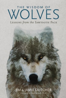 The Wisdom of Wolves, Hardback Book