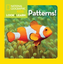 Look and Learn: Patterns, Board book Book