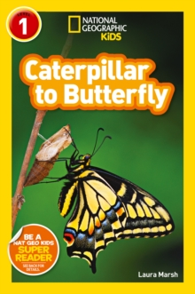 National Geographic Kids Readers: Catepillar to Butterfly, Paperback Book
