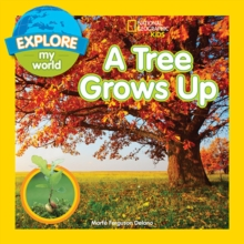 A Tree Grows Up, Paperback / softback Book