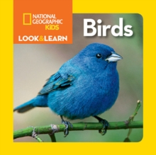 Look and Learn: Birds, Board book Book