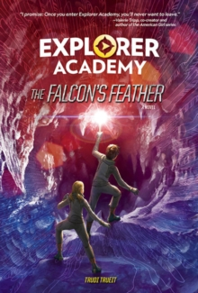 The Falcon's Feather, Hardback Book