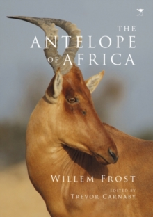 The antelope of Africa, Paperback / softback Book