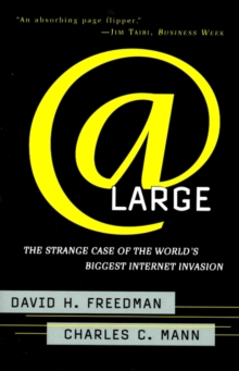 At Large : The Strange Case of the World's Biggest Internet Invasion, EPUB eBook