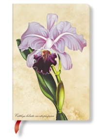 PAINTED BOTANICALS BRAZILIAN ORCHID MINI, Hardback Book