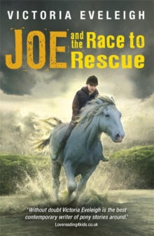 The Horseshoe Trilogy: Joe and the Race to Rescue : A boy and his horses, Book 3, Paperback Book