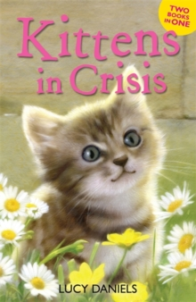 Animal Ark: Kittens in Crisis : Tabby in the Tub & Cats in the Caravan, Paperback Book