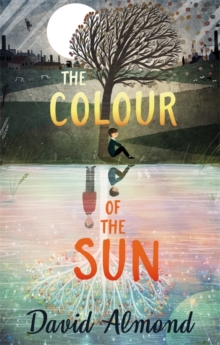The Colour of the Sun, Hardback Book
