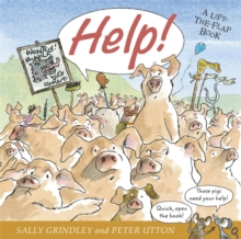 Help! : Lift-the-Flap Book, Paperback / softback Book