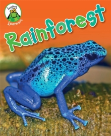Leapfrog Learners: Rainforest, Paperback Book