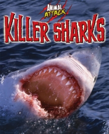 Animal Attack: Killer Sharks, Paperback / softback Book