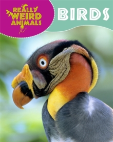 Really Weird Animals: Birds, Paperback Book