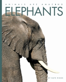 Animals Are Amazing: Elephants, Paperback Book