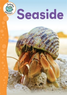 Tadpoles Learners: Seaside, Paperback Book