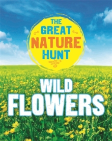 The Great Nature Hunt: Wild Flowers, Hardback Book