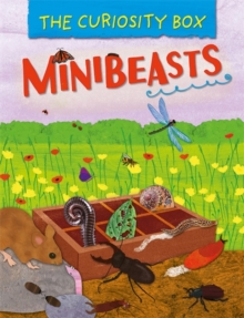 The Curiosity Box: Minibeasts, Paperback / softback Book