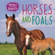 Animals and their Babies: Horses & foals, Paperback / softback Book