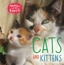 Animals and their Babies: Cats & kittens, Paperback / softback Book