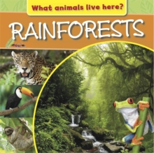 What Animals Live Here?: Rainforests, Hardback Book