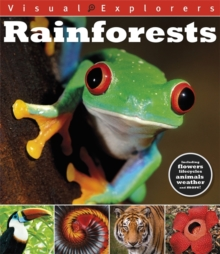 Visual Explorers: Rainforests, Paperback Book