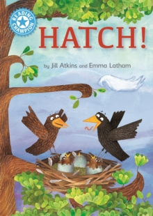 Reading Champion: Hatch! : Independent Reading Blue 4, Hardback Book