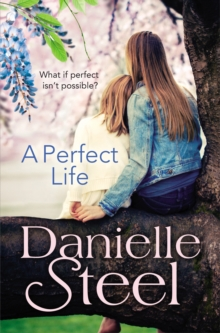 A Perfect Life, EPUB eBook
