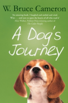 A Dog's Journey, Paperback Book