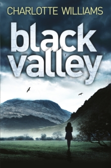 Black Valley, Paperback Book