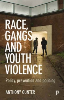 Race, gangs and youth violence : Policy, prevention and policing, Paperback / softback Book