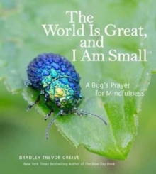 The World Is Great, and I Am Small : A Bug's Prayer for Mindfulness, Hardback Book
